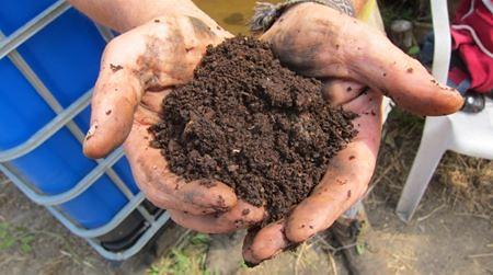 經過兩年的分解後的堆肥物已成為濕潤的深啡色泥土。圖片提供:敏芝