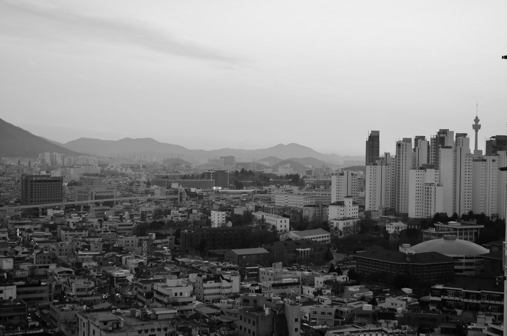 Daegu Skyline Black and White