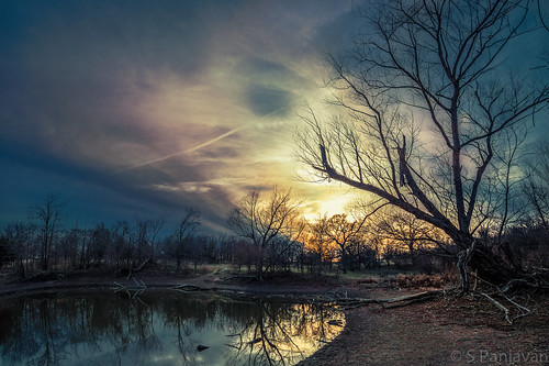 blue trees sunset sky sun reflection water silhouette clouds pond hdr vr