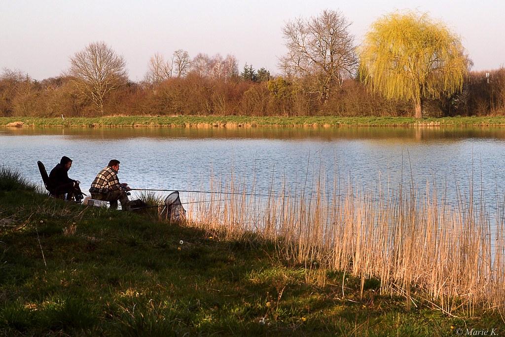 Grand calme au bord du lac 13430467774_cbb5bc40cb_b
