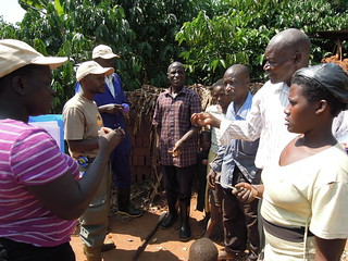 ILRI staff in discussions with farmers, Kamuli district, Uganda