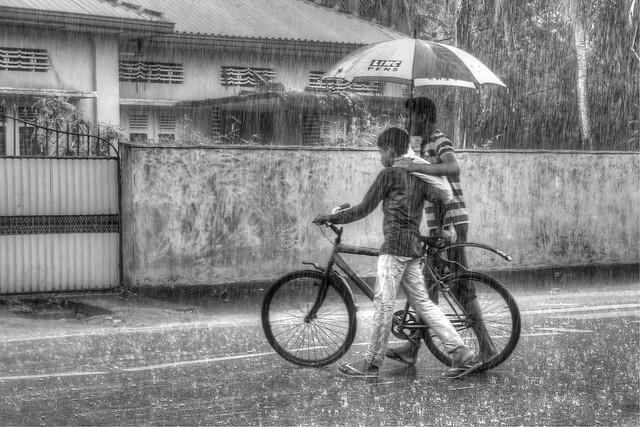 Rain {Explored}