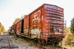 SCL Boxcar | CSX Cordova Branch
