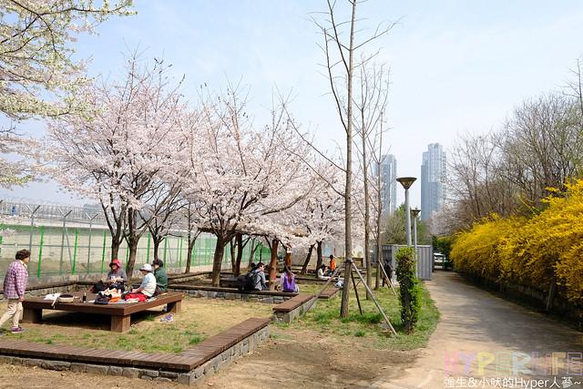 首爾林seoul forest (23)