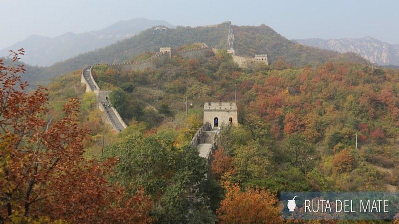 Muralla China Mutianyu (11)