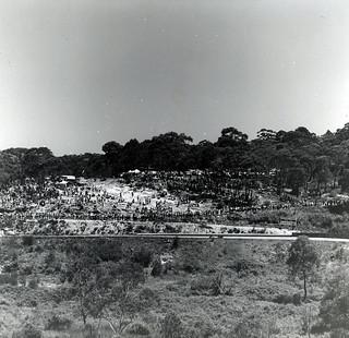 Catalina Race Track