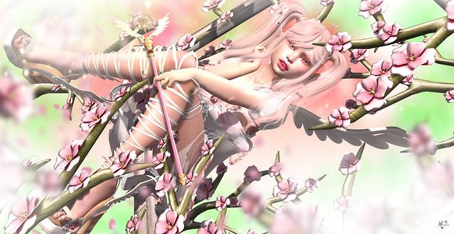 SpringContest~meriluu17~Sakura Angel