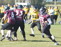 Hertfordshire Cheetahs at Hastings Conquerors