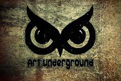 Owl underground