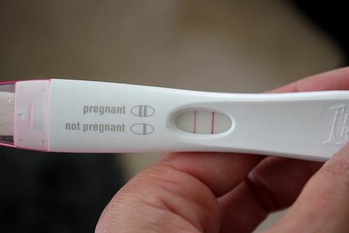 20130608. Pregnant!