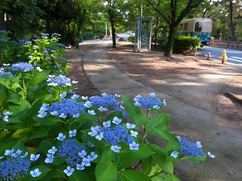 Shukugawa Park 4