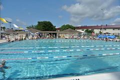 Worlds Largest Swim Lesson 2013