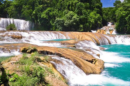 Cascadas de Agua Azul (10)