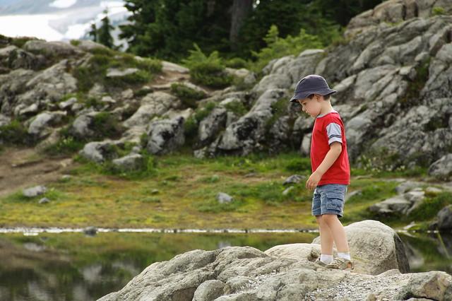 A Hiker's Contemplations