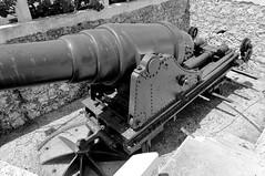 combat vehicle(0.0), vehicle(0.0), tank(0.0), machine gun(0.0), firearm(0.0), gun(0.0), military(0.0), weapon(1.0), gun turret(1.0), monochrome photography(1.0), cannon(1.0), monochrome(1.0), black-and-white(1.0),