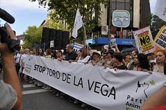 Manifestación STOP Toro de la Vega