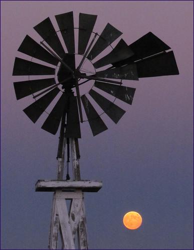 sunset geotagged evening centennial colorado state springs falcon coloradosprings co prairie plains floyd muaddib americanwest curtisroad westernusa coloradospringscolorado coloradospringsco centennialstate judgeorrroad floydmuaddib
