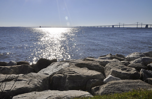 Photo of Chesapeake Bay from shoreline