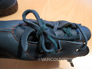 El Naturalista Yggdrasil boot-4