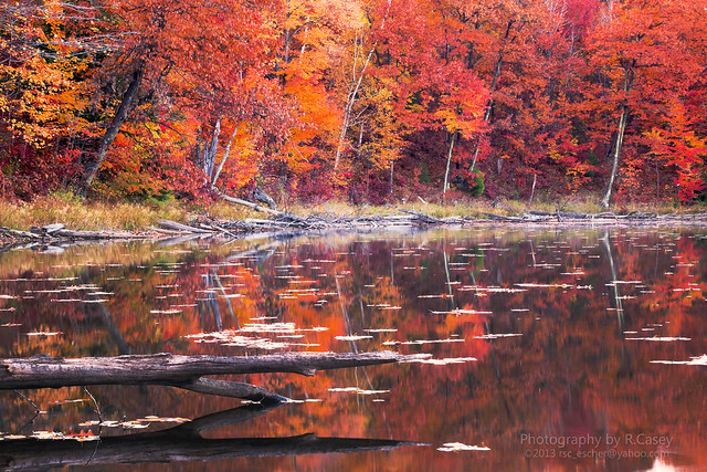 reflections on fall colors