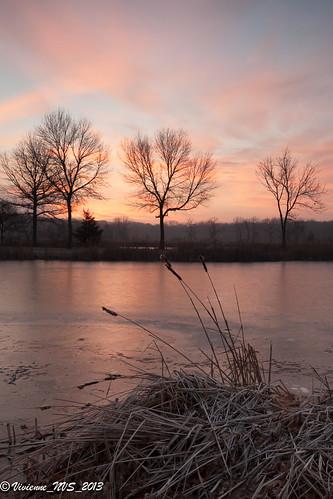 ice sunrise illinois pond frost preserves lakecounty lakecountyforestpreserves halfdayforestpreserve