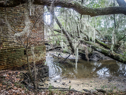 hiking southcarolina biking cooperriver ghosttowns lcu mepkinabbey berkeleycounty strawberrychapel bonneauferry lowcountryunfiltered childsbury bonneauferrywma comingtonplantation