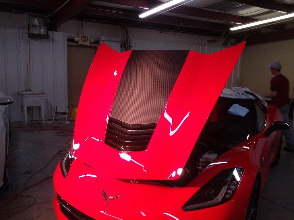 stingray hood