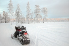 auto racing(0.0), racing(0.0), sports(0.0), winter sport(1.0), winter(1.0), vehicle(1.0), snow(1.0), motorsport(1.0), snowmobile(1.0), land vehicle(1.0),