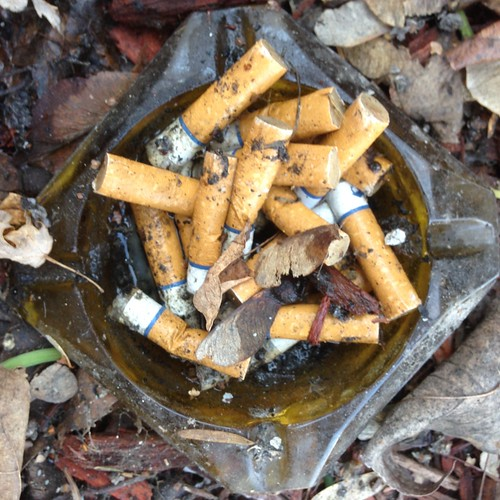 Found in the Melting Snow: Ashtray Full of Cigarette Butts