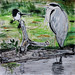magpie and heron on the far side of the river lea, near cheshunt by szpako