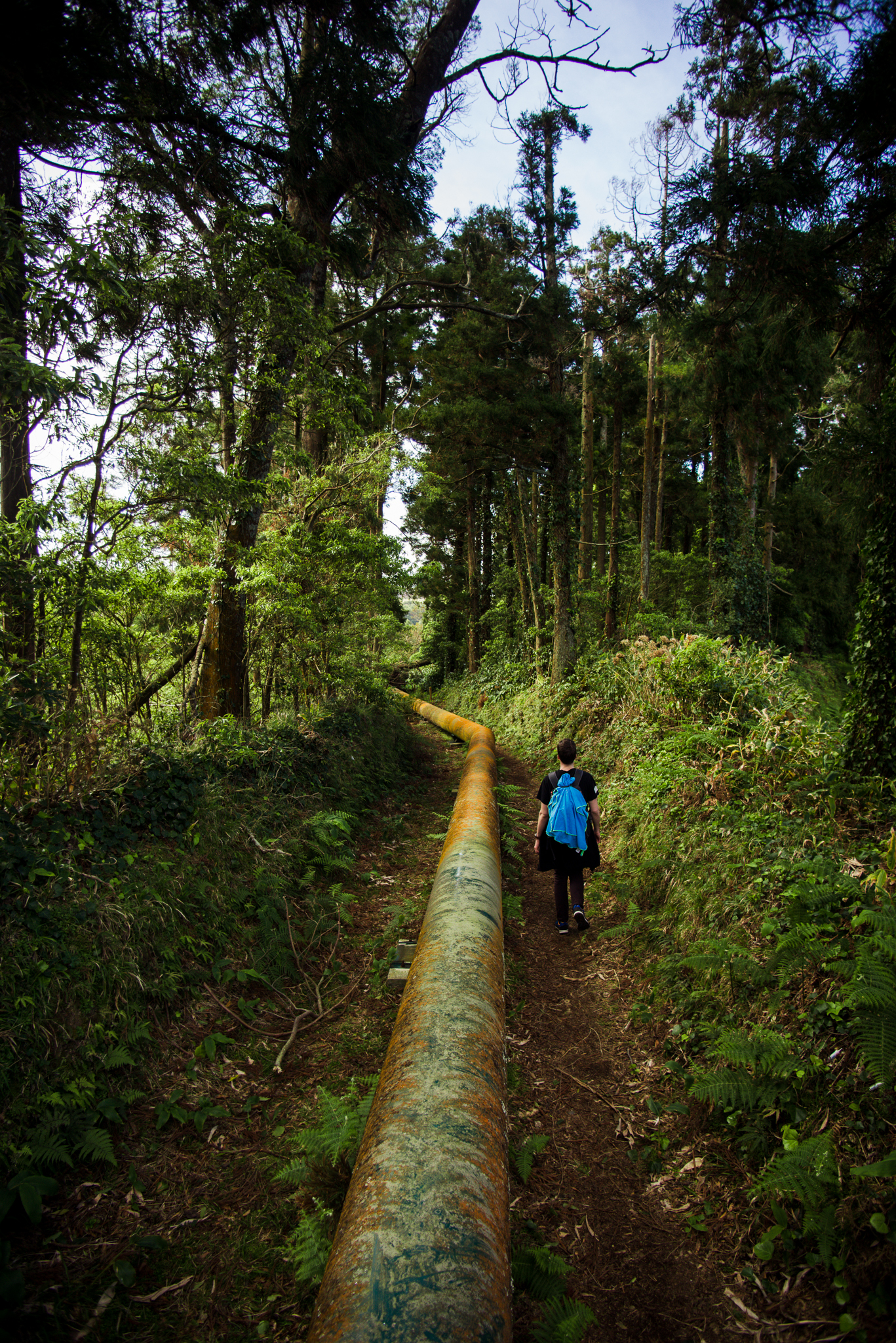 A Salto de cabrito túraútvonal egy csatorna mellett halad az erdőben.