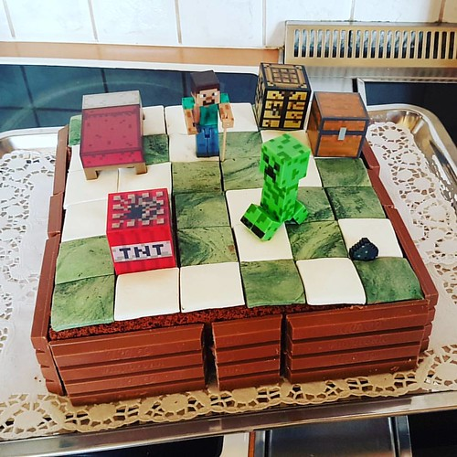 MIMECRAFT Cake for my little cousin! 🎂 #selfmade #homemade #minecraftcake #minecraft #cake #birthdaycake #birthdaypresent #littlecousin #cousin