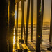 Pismo Beach Pier Sunset by www78