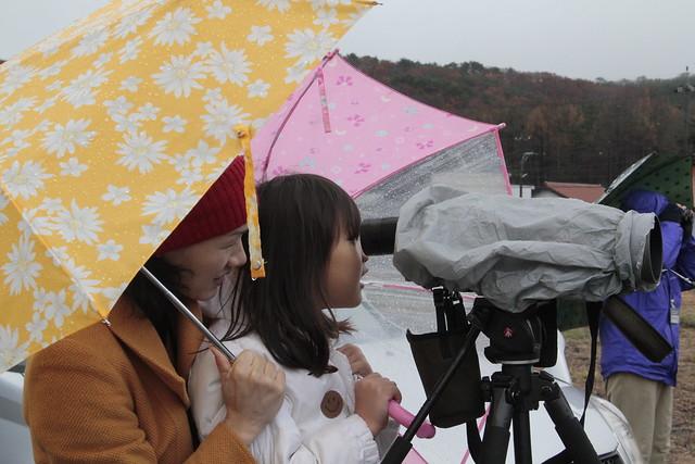 雨の中でもレンジャクの仲間が群れになっていた野を観察中