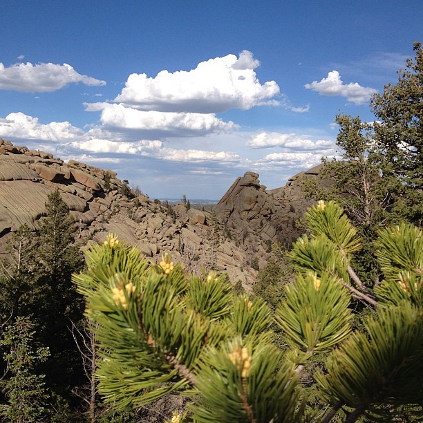 Day188 Great day for a hike after a stressful day at work 6.26.13 #wyoming #jessie365