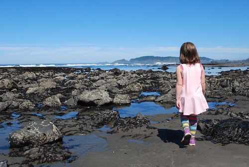 Tide Pooling- Port Orford, OR