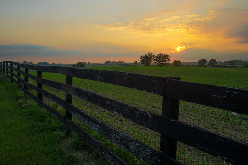 sunset fence illinois corn scenery farm scene il plantation lakewood