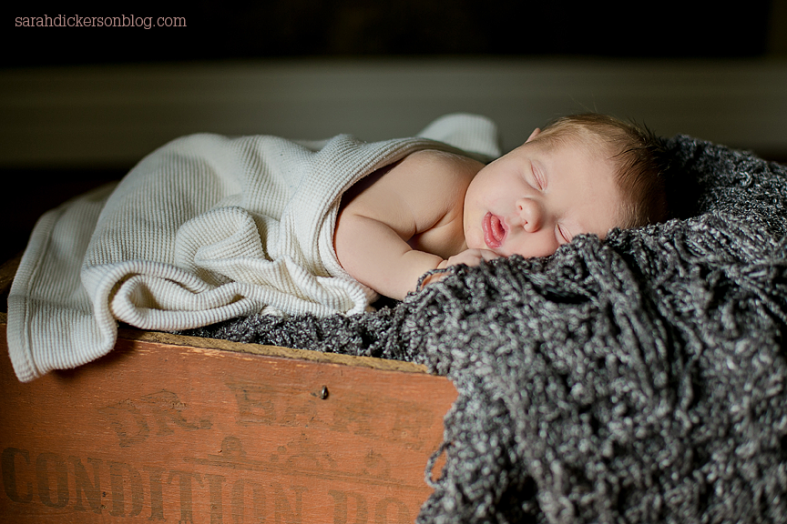Liberty Missouri newborn portrait photos