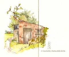 05-06-13a by Anita Davies