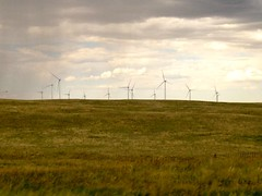 prairie, steppe, machine, horizon, cloud, windmill, grass, plain, wind, wind farm, natural environment, electricity, meadow, rural area, wind turbine, grassland,