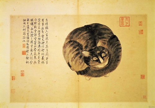 animal cat traditional chinese painter 15thcentury 1494 shenzhou 1490s publiccollection