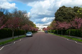 Chester Road dans le Regent's Park
