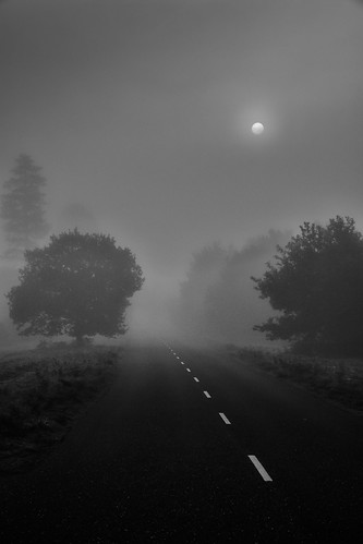 Foggy road to Orford