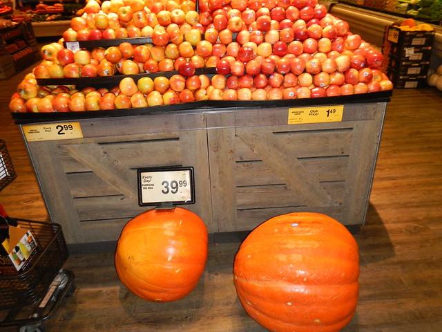 $40 Pumpkin