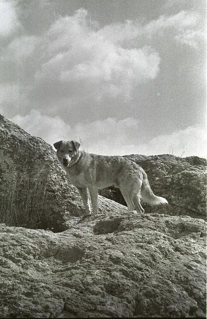 Oscar en La Bufa; Guanajuato, Mexico (2002)