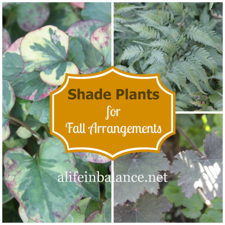 Shade Plants for Fall Arrangements