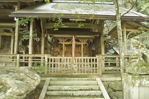 【写真】2013 紅葉 : 岩戸落葉神社/2020-11-23/IMGP3030