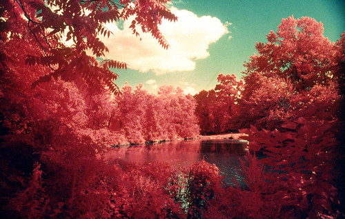 Infrared Film - Summer 2013