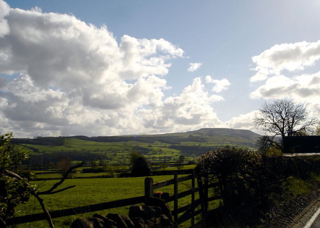 1. Campos del Yorkshire. Autor, Davesag