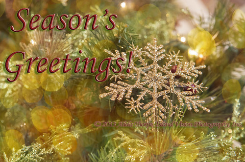 season's greetings by Alida's Photos